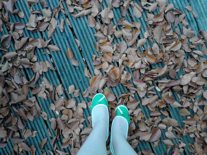 Low section of woman standing on floorboard surrounded by dry leaves
