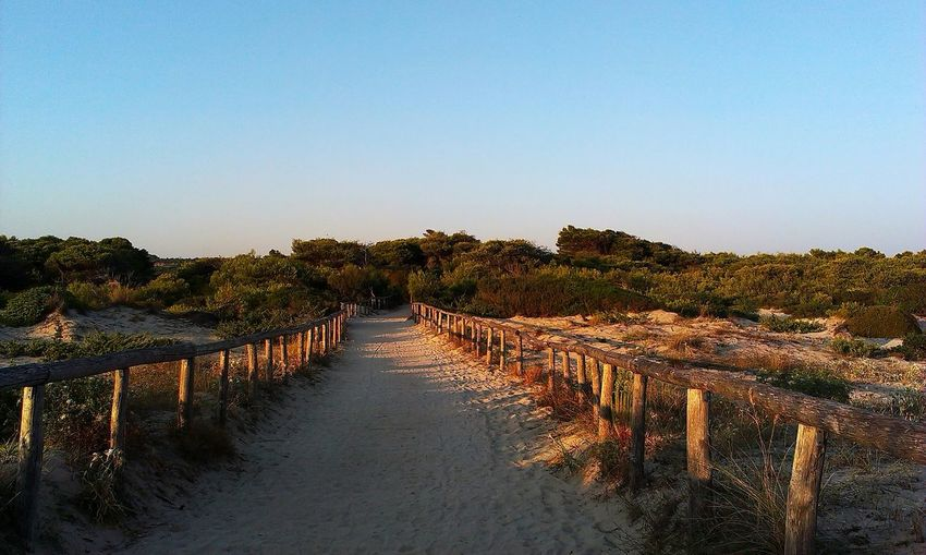 Salento Sea Italy Sunset Dreams The Magic Secret Of Life Malibu Beach Torre San Giovanni Pineta