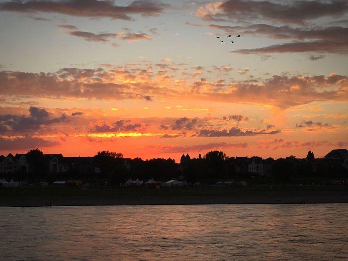 Oberkassel NRW-Fest Rheinufer River Sky Enjoying Life Sonnenuntergang Sunset