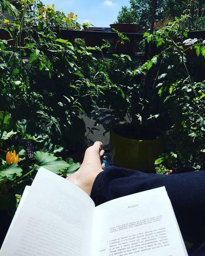 Balcon reading