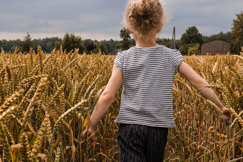 in the wheat field Agriculture Casual Clothing Cereal Plant Child Childhood Day Field Growth Hairstyle Land Leisure Activity Lifestyles Nature One Person Outdoors Plant Real People Rear View Standing Three Quarter Length