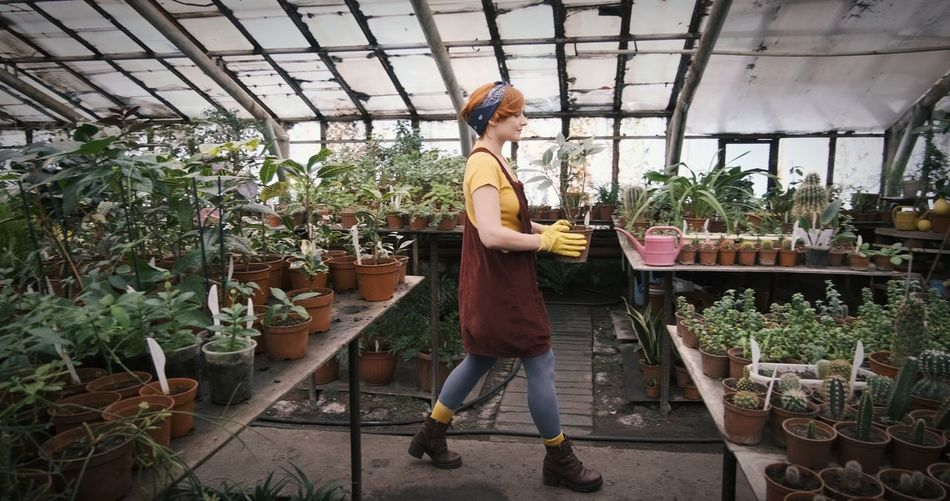 Woman standing by potted plants in greenhouse