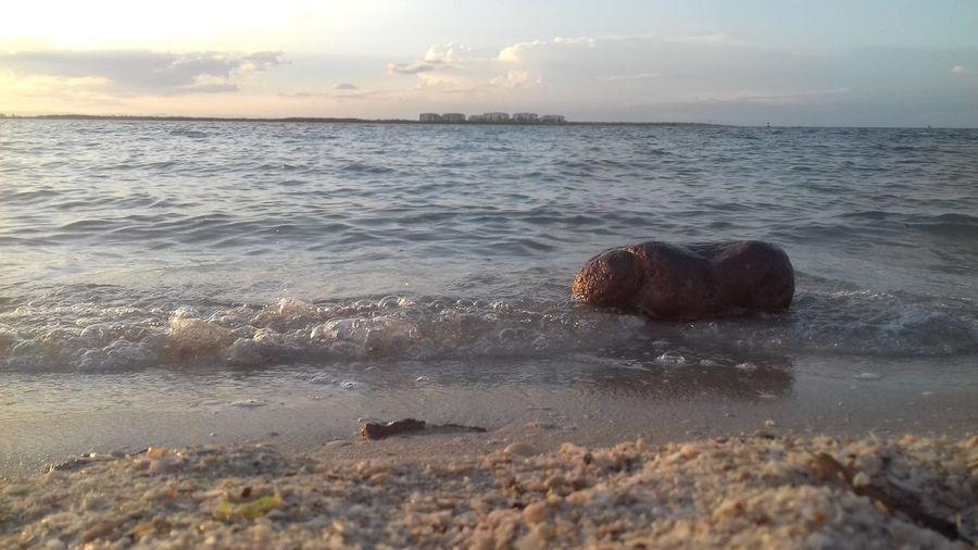 Sand & Sea!♡♡♡