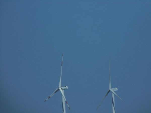 Environmental Conservation Wind Power Wind Turbine Low Angle View Nature No People Windmill Alternative Energy Rural Scene Renewable Energy Technology Sky Day Outdoors Industrial Windmill EyeEm Gallery EyeEm Best Shots
