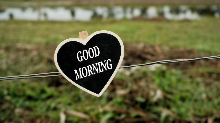 Good Morning Good Morning Fresh Morning New Day Greetings Valentine's Day - Holiday Nature Outdoors Grass Rural Scene No People Close-up Day Orthographic Symbol