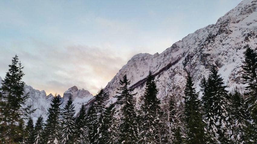 EyeEm Selects Shades Of Winter