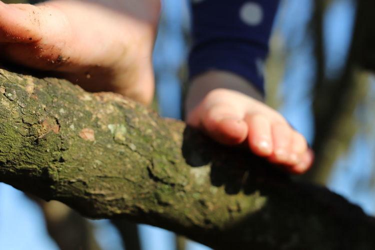 Close-up of hands holding leaf