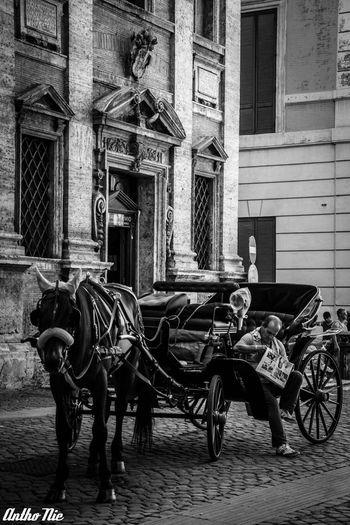 Streetphotography Blackandwhite Monochrome Vetto Team