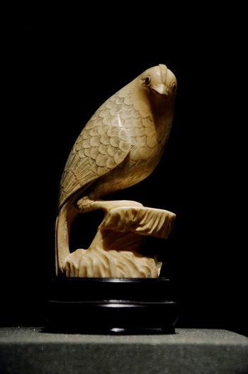 木鸟 wooden bird Museum Bird Wooden Black Background Indoors  Studio Shot Close-up Day