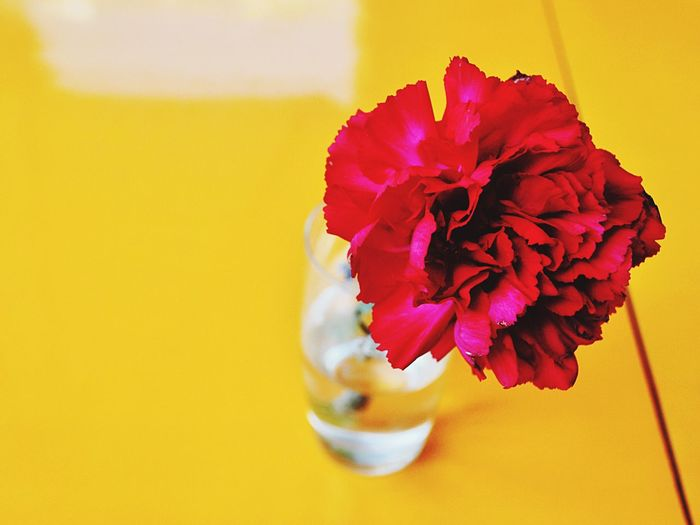 Viva España SPAIN Still Life Flower Red Yellow Color Colors Colorful Summer Open Edit Holidays Holiday Color Of Life Colour Of Life