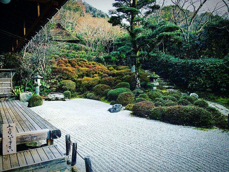 金福寺 一乗寺 Relaxing Kyoto 寺社仏閣 京都 庭園 Relaxing
