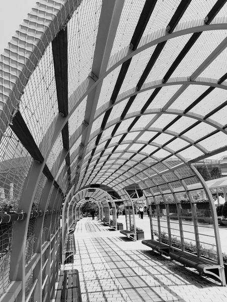 Structure Hello World Building View Taking Photos Light Light And Shadow Natural Light Taking Photos Walking Around Silhouette Blackandwhite Monochrome Black And White Geometric Shapes Geometry Geometric Abstraction Shape Shapes And Forms Shapes And Patterns  Shapes And Lines Tunnel Tunnel Vision
