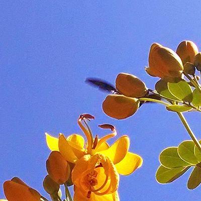 Motofoto Primavera Setembro