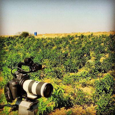 Israelimoment Israel Gaza Canon c100