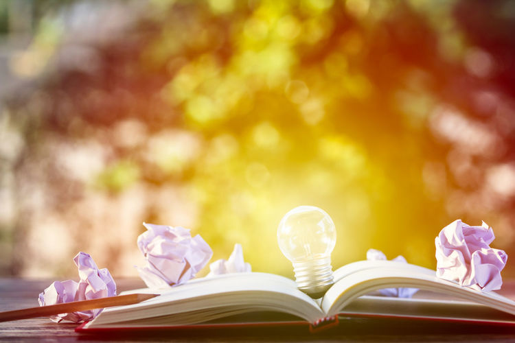Close-Up Of Light Bulb In Books On Table