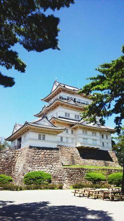Japan Japanese Castle Castle Odawara Castle / Japan