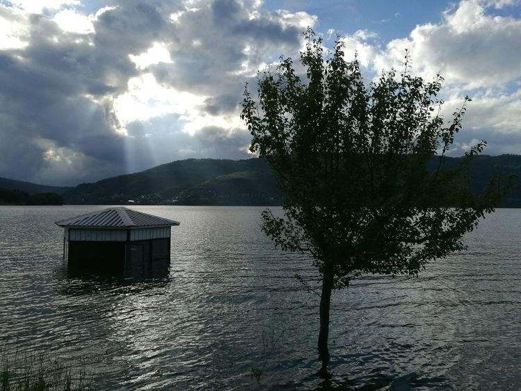 By the lake Water Calm Lake Flooded Clouds Sunrays Sun And Clouds Treeinwater Tree Macedonia Mavrovo