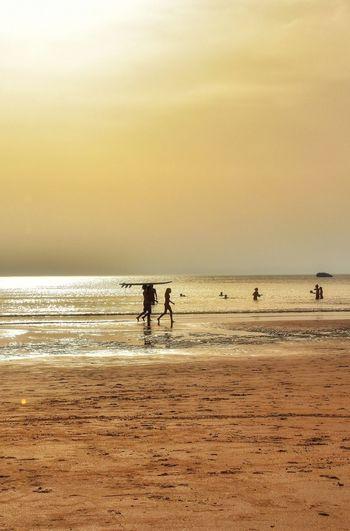 Surf... Ocean