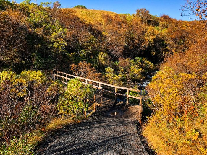 A walk into the nature Eyem Best Shots EyeEm Selects EyeEm Nature Lover EyeEmNewHere Autumn Tree Change Nature Beauty In Nature Scenics Tranquil Scene Outdoors Landscape Mountain Day Footbridge No People Tranquility