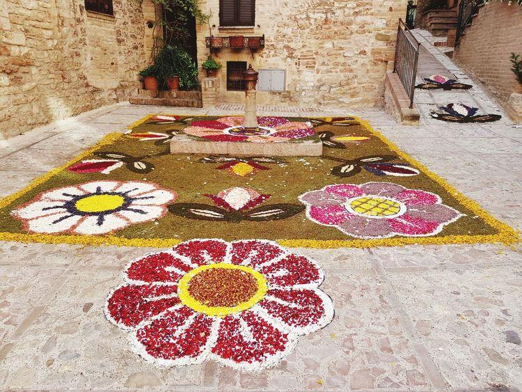 infiorata di Spello Fiori ♥ Fiori Colorati.. Infiorata Spello, Italy Fiore🌼🌻🌺 Italy🇮🇹 Flower High Angle View Architecture Building Exterior Built Structure