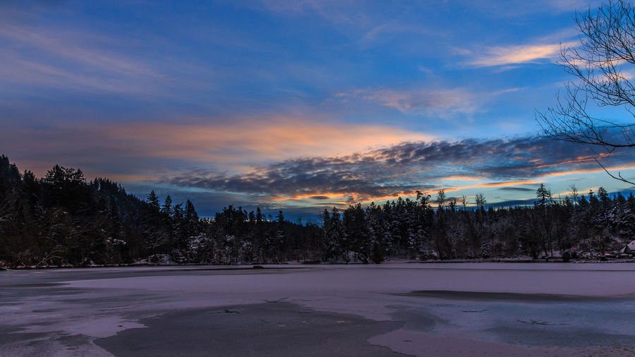 Sonnenaufgang bei Minus 12 Grad am Bergsee in Bad Säckingen Bergsee Black Forest Cloud - Sky Cold Temperature Dramatic Sky Frozen Ice Hockey Landscape Nature No People Outdoors Scenics Schwarzwald Sky Snow Sunrise Sunrise_sunsets_aroundworld Tree Winter
