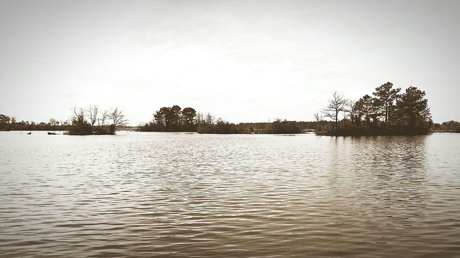 Lake Whitehurst First Eyeem Photo