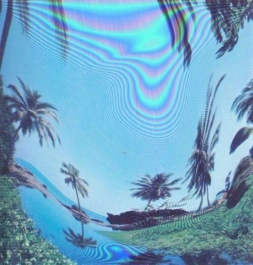 Holographic Perfect Palm Trees