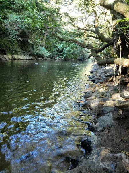 Rio. River Sunset Colombia Swimming Colombia ♥  Hello World Nature_collection Beautiful Paseo Al Rio Verano Water