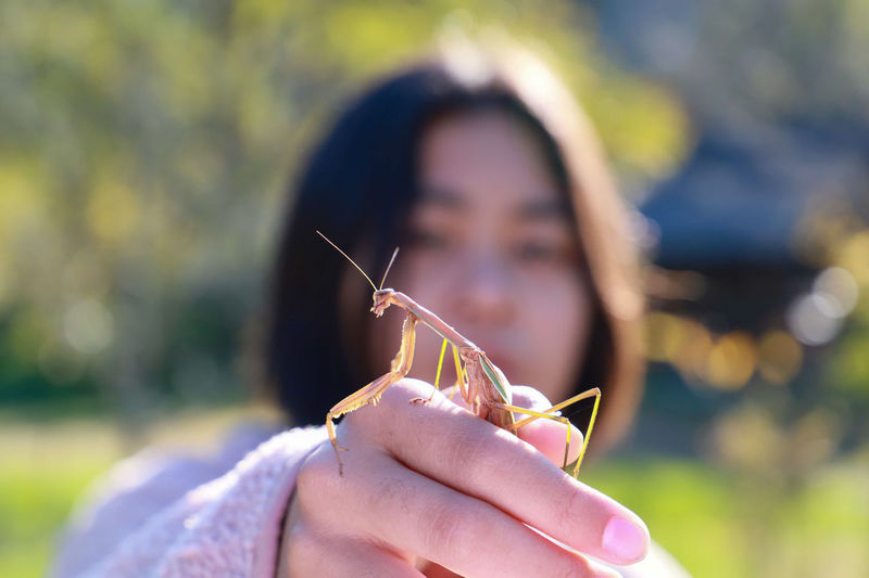 Close-up of girl holding praying mantis