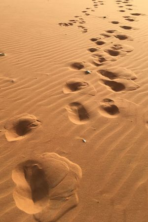 Follow the lead Outdoors Sand Beach FootPrint No People Nature Sand Dune Track - Imprint Backgrounds Desert Day Sunset Riyadh KSA