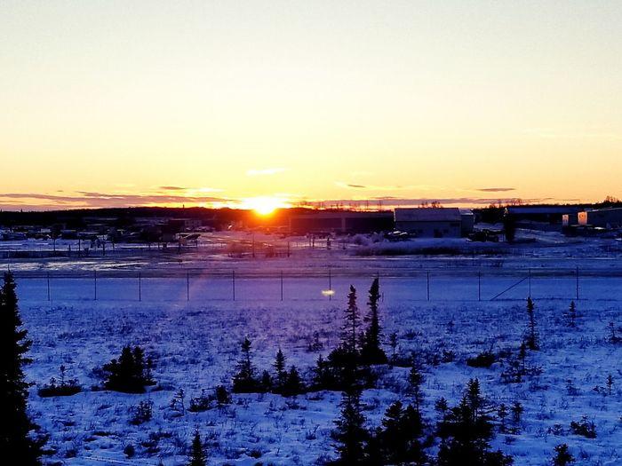 Sunset Cold