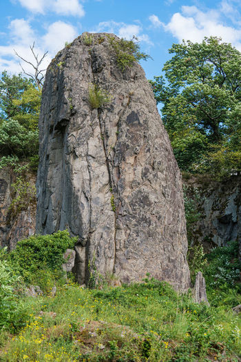 Low angle view of rock amidst trees against sky