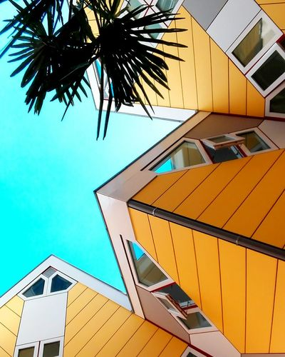 TakeoverContrast Building Exterior Architecture Clear Sky City Blue Multi Colored Built Structure Modern No People Sky Cube Houses Holland❤ Building Exterior Architecture Built Structure Low Angle View Blue Clear Sky Growth City Outdoors Day Multi Colored Sky