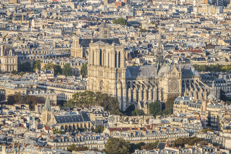 Aerial view of the cathedral of notre dame de paris