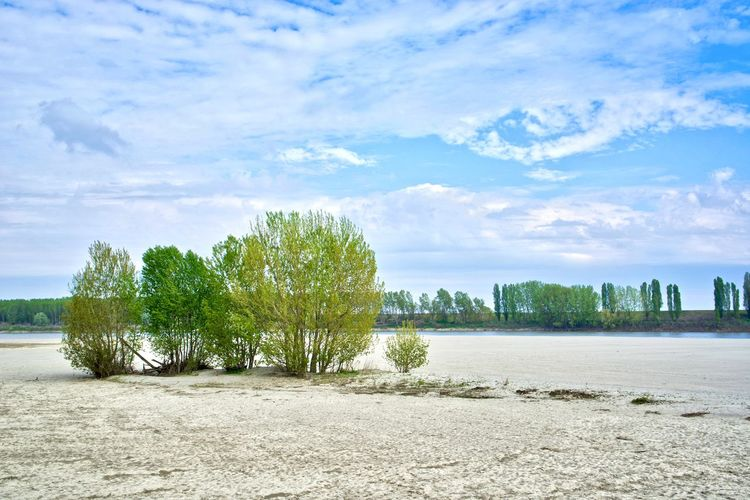 Italy, Mantova: countryside along river Po Daylight Day Time Cloud, Cloudy Sky Sand Bank Sand Horizontal Environment Non-urban Scene Island Isolation From A Distance Tree Water Cloud - Sky Plant Land Beach Nature No People Day Scenics - Nature City Outdoors Architecture Beauty In Nature Landscape Sea Tranquil Scene Tranquility Relaxing Relax Outdoor Photography