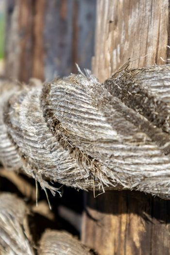 weathered rope on wooden post close up Close-up Day No People Focus On Foreground Wood - Material Selective Focus Nature Rope Textured  Dry Outdoors Still Life Pattern Brown Fragility Rough Vulnerability  Equipment Plant Thread Dried Rope Old Macro Close Up