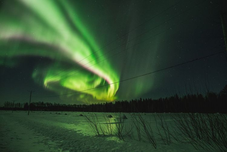 Bright Northern Lights spiral Beauty In Nature Scenics - Nature Sky Night No People Nature Tranquil Scene Natural Phenomenon Tranquility Snow Winter Green Color Star - Space Majestic Astronomy Aurora Polaris Experience Arctic Northern Lights Lapland Travel Destinations Check This Out Hello World Hanging Out Outdoors