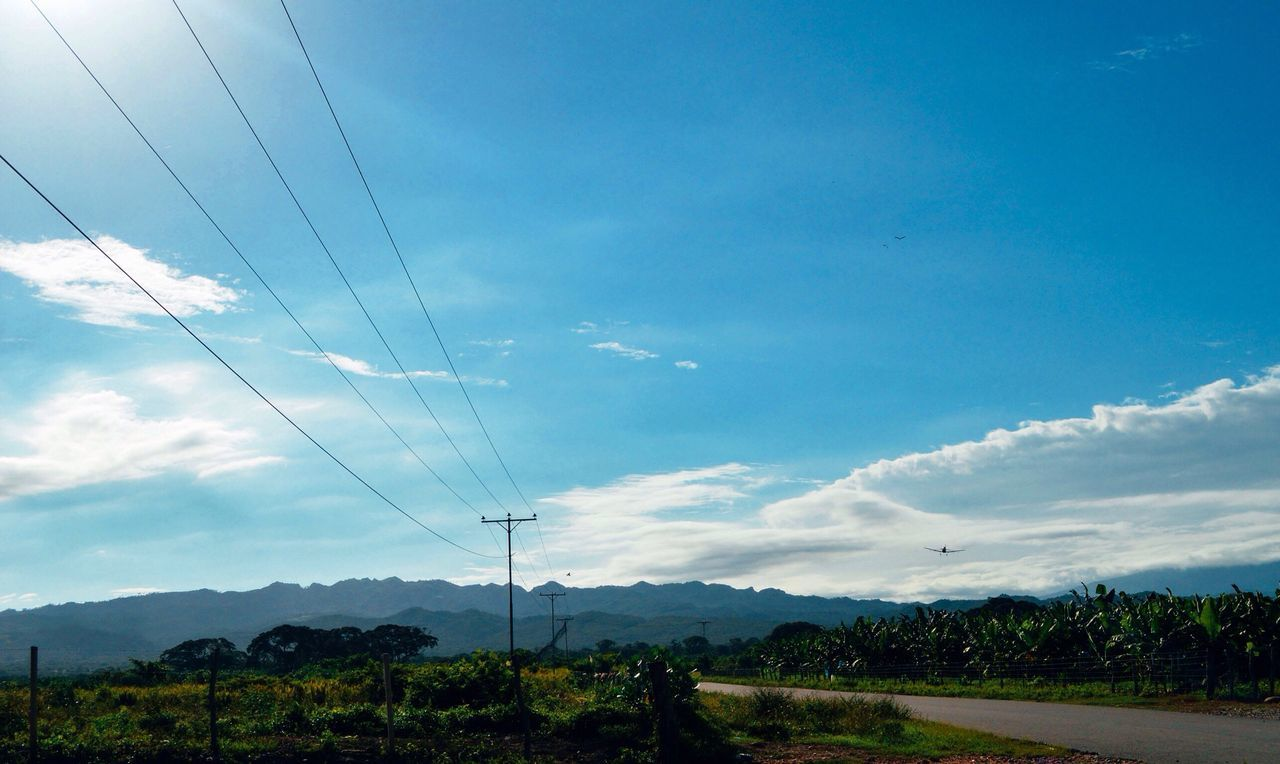 cable, sky, power line, cloud - sky, electricity, power supply, connection, electricity pylon, nature, day, outdoors, fuel and power generation, low angle view, no people, tree, beauty in nature, scenics, landscape, technology, telephone line