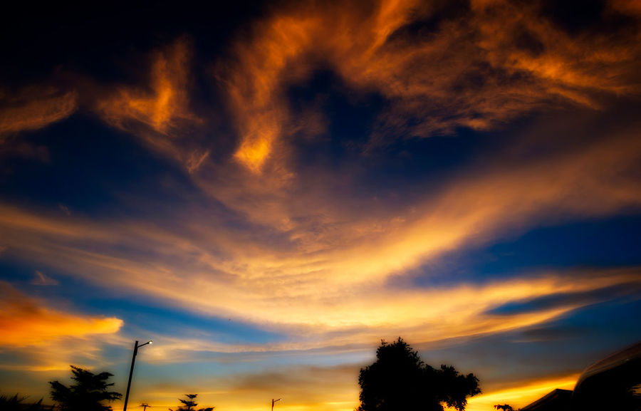 Beauty In Nature Cloud - Sky Day Dramatic Sky Low Angle View Nature No People Outdoors Scenics Silhouette Sky Sunset Tranquil Scene Tranquility Tree