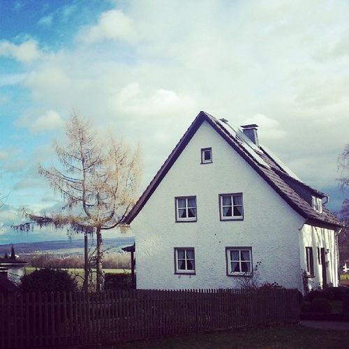 Haus und Larixdecidua auf dem Brunsberg - Godelheim Höxter HX