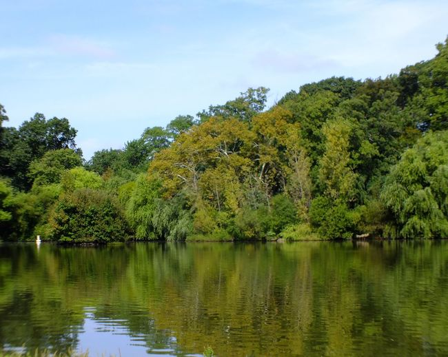 Reflections Beauty In Nature Day Forest Green Color Growth Lake Lake Reflection Nature Water Naturaleza Lake View Landscape Nature No People Outdoors Pond Reflections Reflection Scenics Sky Tranquil Scene Tranquility Tree Water Waterfront
