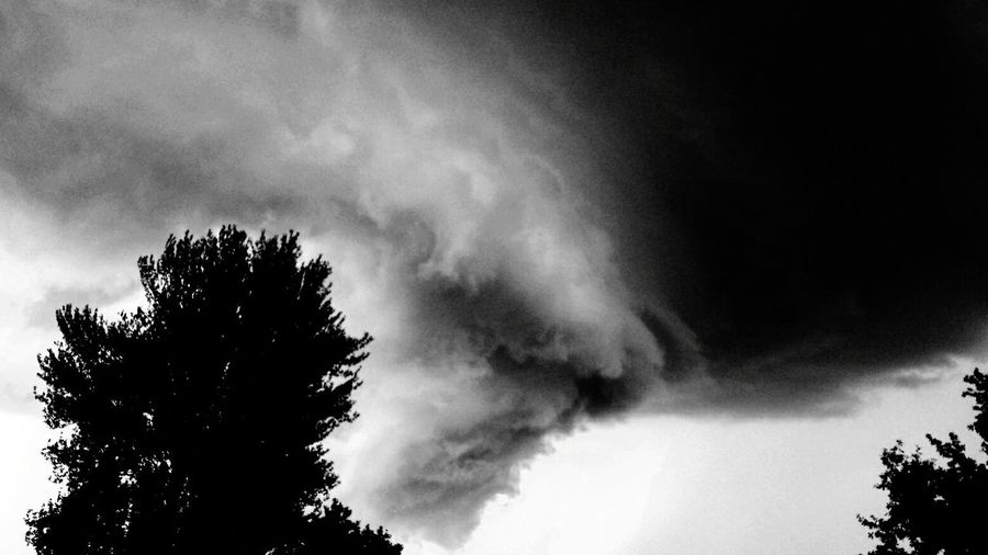Storm Nature Thunderstorm Storm Cloud Beauty In Nature Outdoors Stormy Skies Tree And Sky Blacksky Blackandwhitephotography Berlinsky Skyoverberlin Hurricane - Storm Sky Blackandwhite Berlin Stormy Clouds Weather Outside Photography First Eyeem Photo