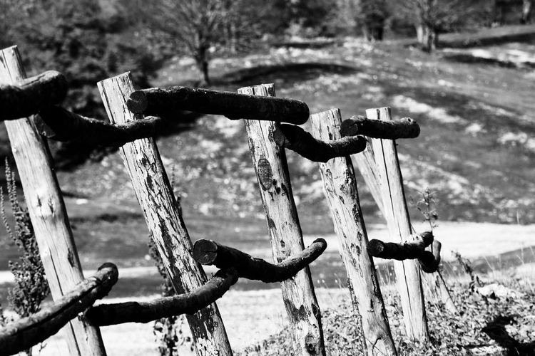 monte livata Natura B&w Black And White Friday Close-up Day Focus On Foreground Metal Montagna Nature Photography Nature No People Outdoors Protection Rusty Staccionata Water Wood - Material