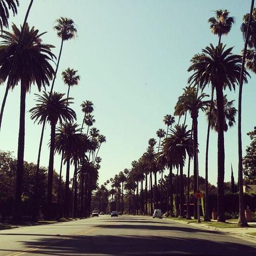 California Love! Cali La Morningdrive Dayoff Losangeles Perfectweather Springishere Summerisnear Bh Beverlyhills Picoftheday Sunny