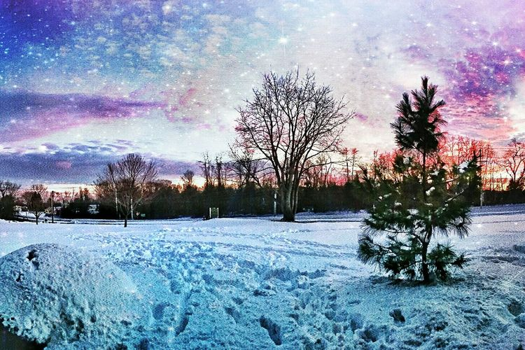 Samsung Galaxy S5 Beautiful Eye4photography  Mobile Photography Tadaa Community EyeEm Best Edits Winter Wonderland EyeEm Gallery Taking Photos Hello World Check This Out Snow Edit Snapseed Pixlr Trees Winter Overlays Sunset Cold Colors Outdoors Nature Photography Nature Enjoying Life