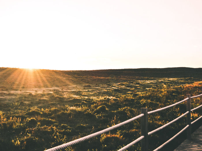 Sunset Clear Sky Summer Beauty In Nature Day Landscape Sunlight Nature Sun Railing Field Sky Rural Scene No People Tranquility Scenics Beauty In Nature Sunbeam Sunlight Water Architecture Built Structure