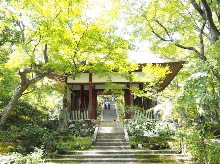 Arashiyama Kyoto 常寂光寺
