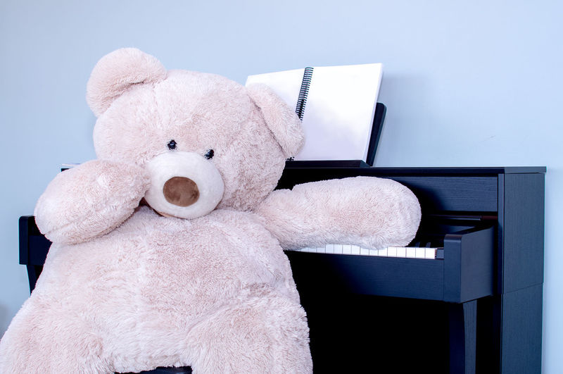 a giant stuffed teddy bear prepares to play a piano Music Piano Teddy Bears Animal Representation Childhood Close-up Creativity Cute Day Furniture Giant Bear Indoors  Music Musical Instrument Musician Representation Softness Still Life Studio Shot Stuffed Stuffed Toy Teddy Bear Toy Toy Animal White Color