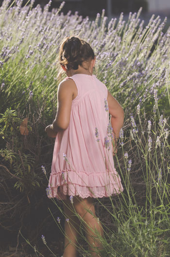 Side View Of Girl Picking Lavender At Farm