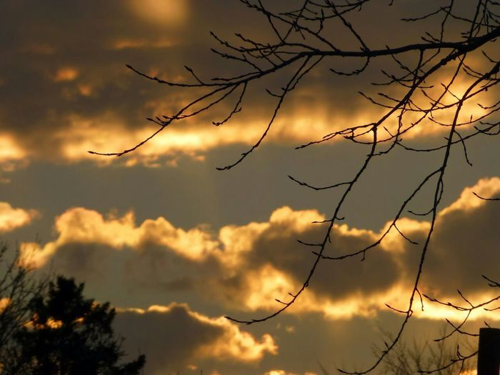 Sky And Clouds Sky Trees And Clouds Nature Sunrise